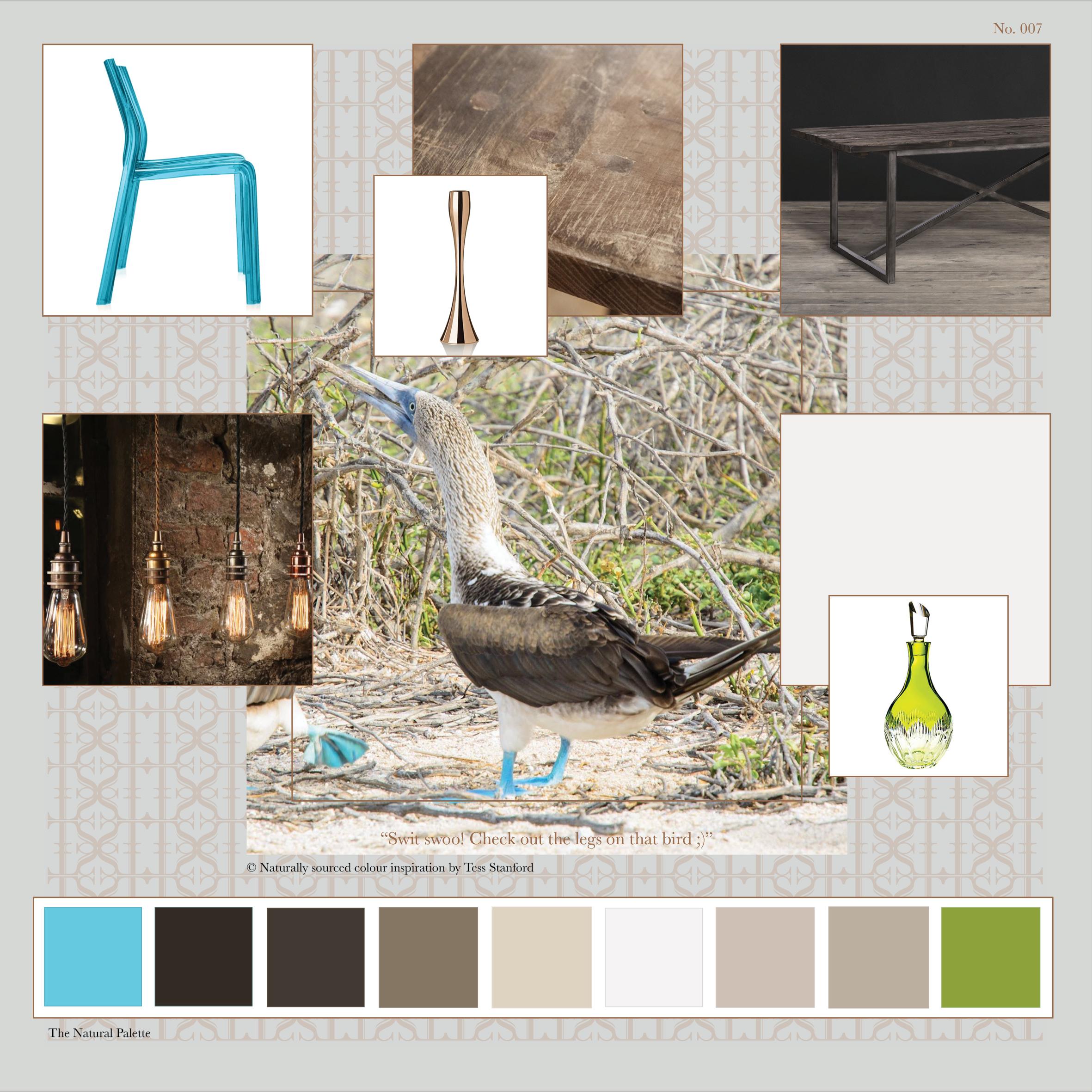 Tess Stanford Interior Design Colour Inspiration Blog No 007